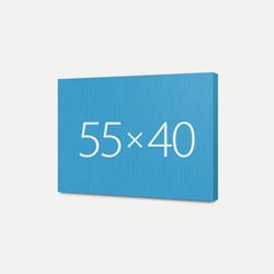 Печать Холст Премиум 40x55