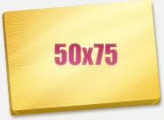 Печать Холст 50x75