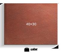 коричневая кожа, 40х30 (шелк)